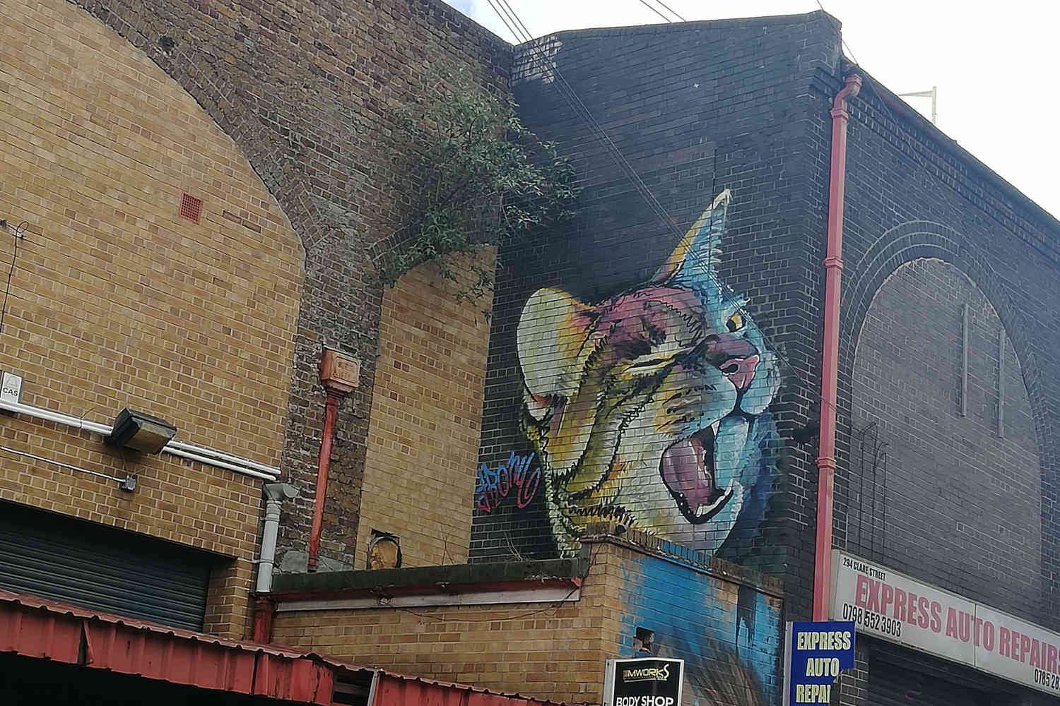 A winking multi-coloured cat mural, painted by Irony on Clare Street