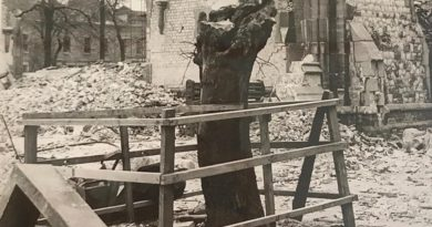 Bombed stub of Mulberry Tree enclosed by fencing, amongst the debris of the London Chest Hospital, Bethnal Green, in sepia.